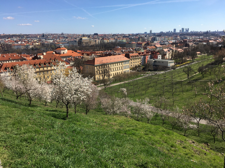 petrin-hill-garden-trees-and-city-view.jpg