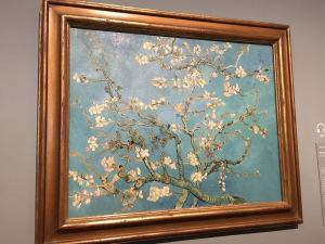 van-gogh-museum-blossoms.jpg
