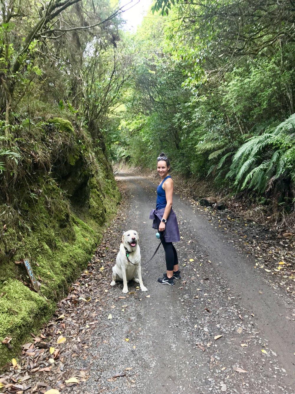 Related to #5 - The Hauraki Rail Trail in Karangahake Gorge