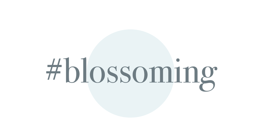 3.-blossoming.png