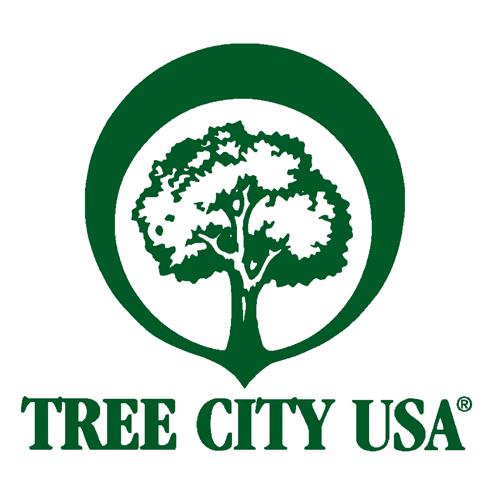 treecitySEO.png