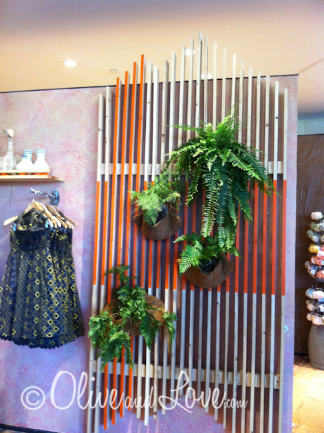 anthropologie plant and wood board wall