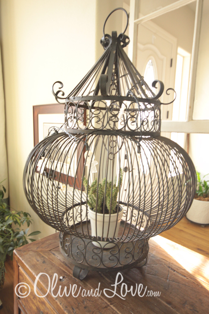 decorating with bird cages