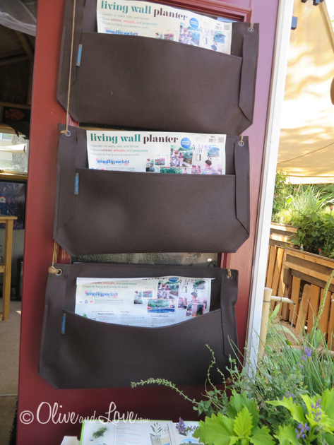 Sierra water gardens Reno Nevada pond specialists wooly pockets