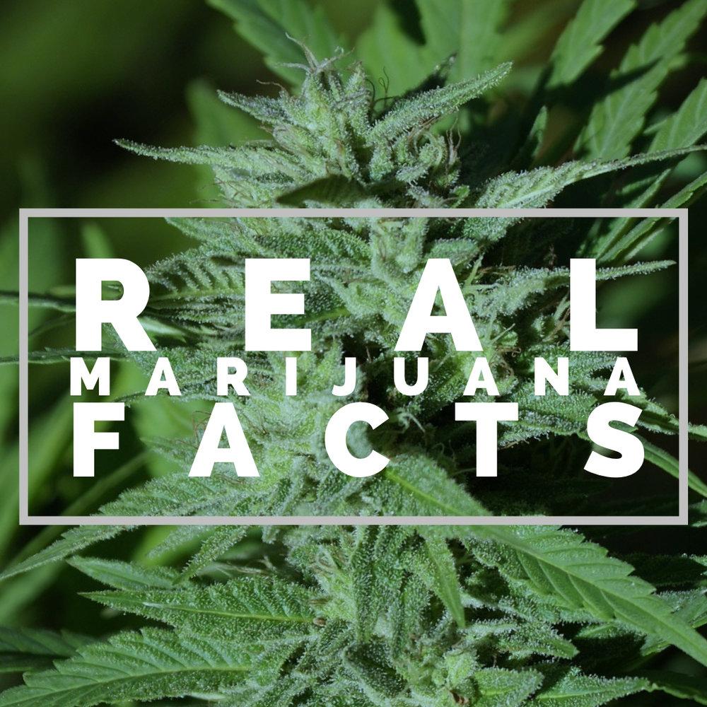 facts the marijuana industry won't talk about -