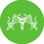 circle-green-25.png