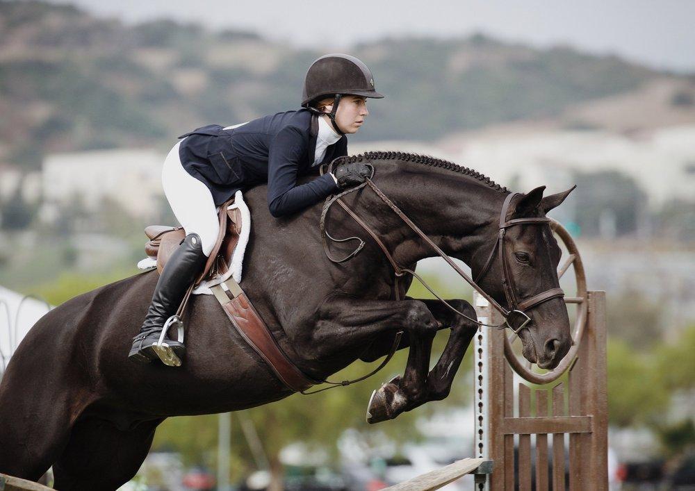Sport • Droit Equin -