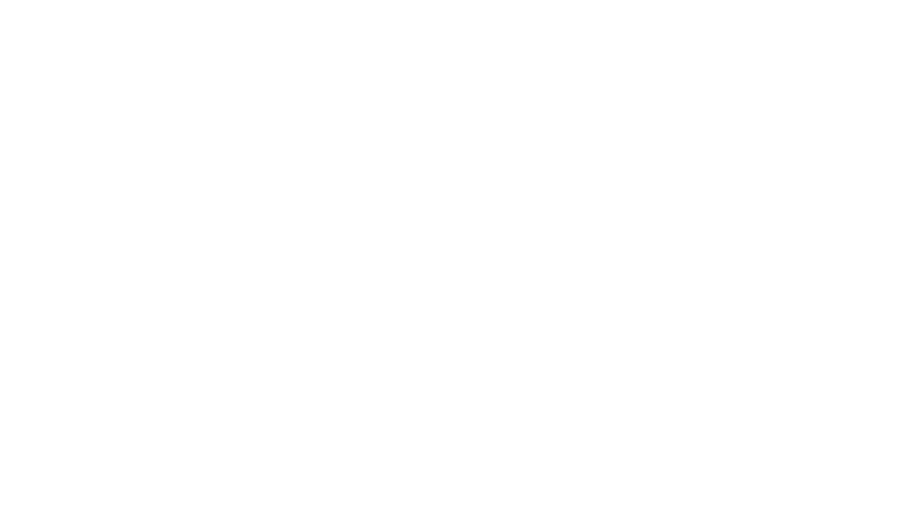 make-a-wish.png