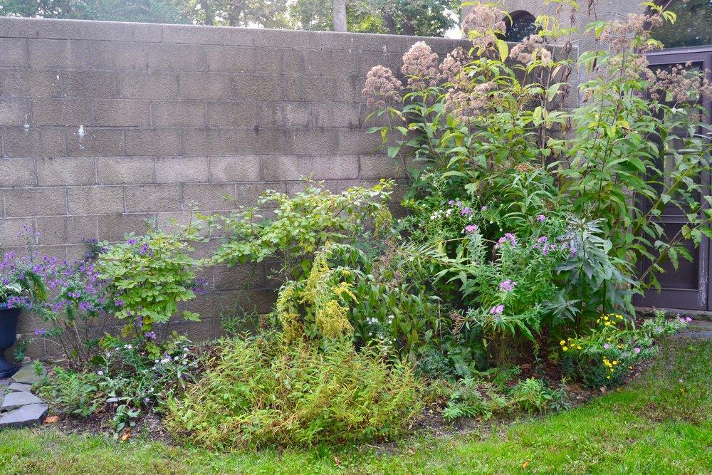 Terrace Garden Border