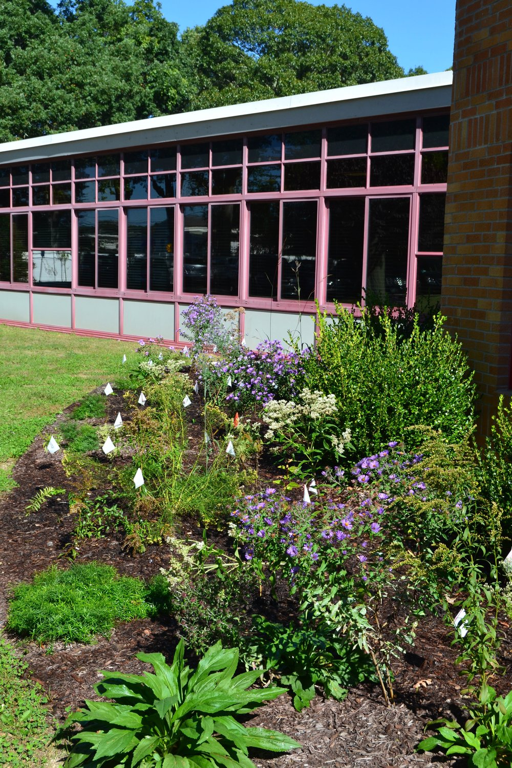 Cherry Avenue School, Sayville