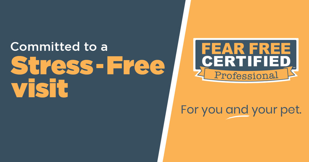 fear free stress free visit.jpg