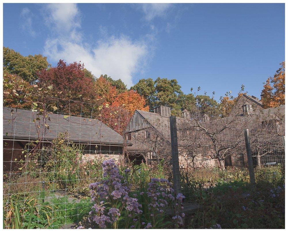 Stone Barns F18-7316.jpg