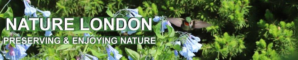 NatureLondonBanner7.jpg