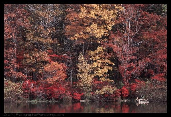 20030102-fall_colors.jpg