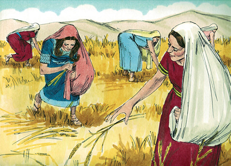 Illustration of Ruth in a wheat field