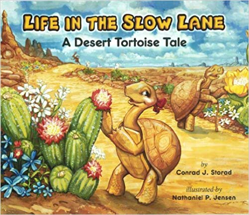 Life in the Slow Lane: A Desert Tortoise Tale