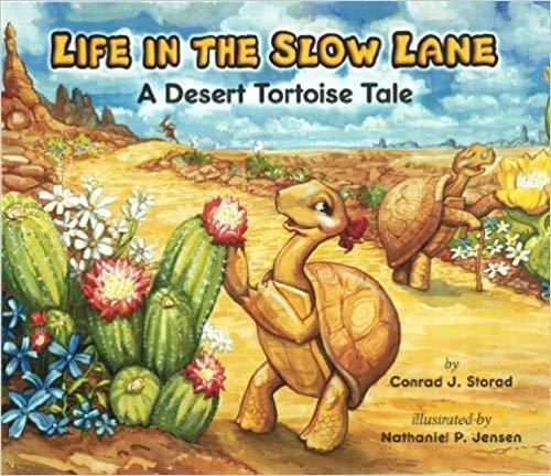 Life in the Slow Lane: A Desert Tortoise Tale