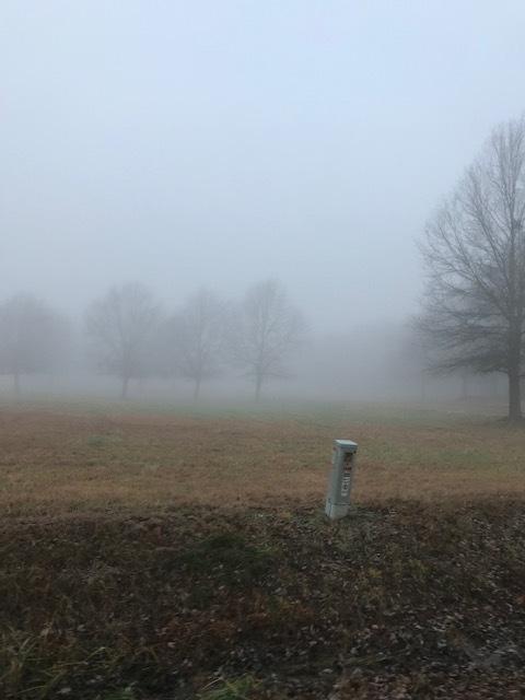 Foggy Morning - Hartselle