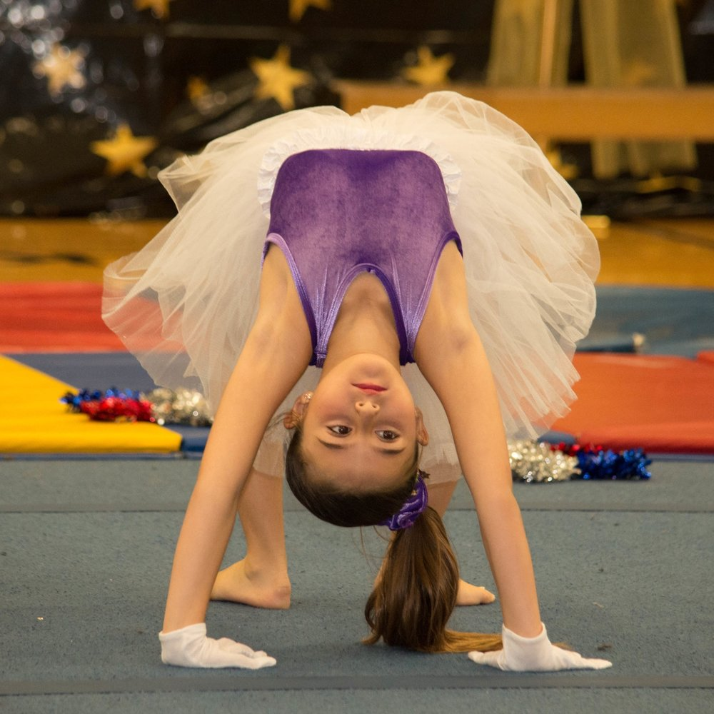 RECREATIONAL GYMNASTICS CLASSESAGES6 AND UP - Click Here For More Information
