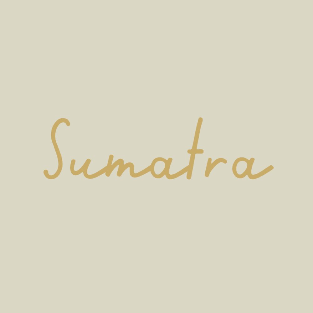 sumatra-01.png