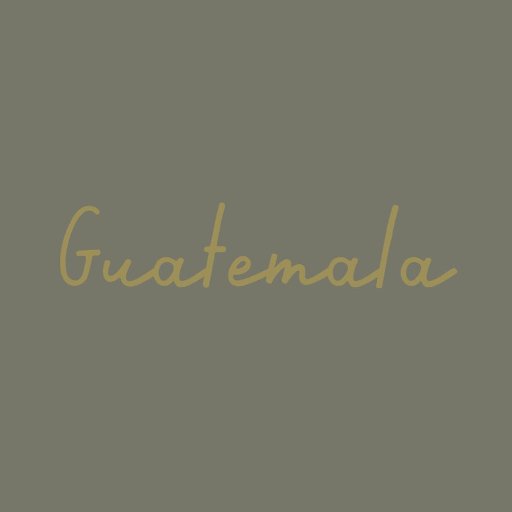 guatemala_new-01.png