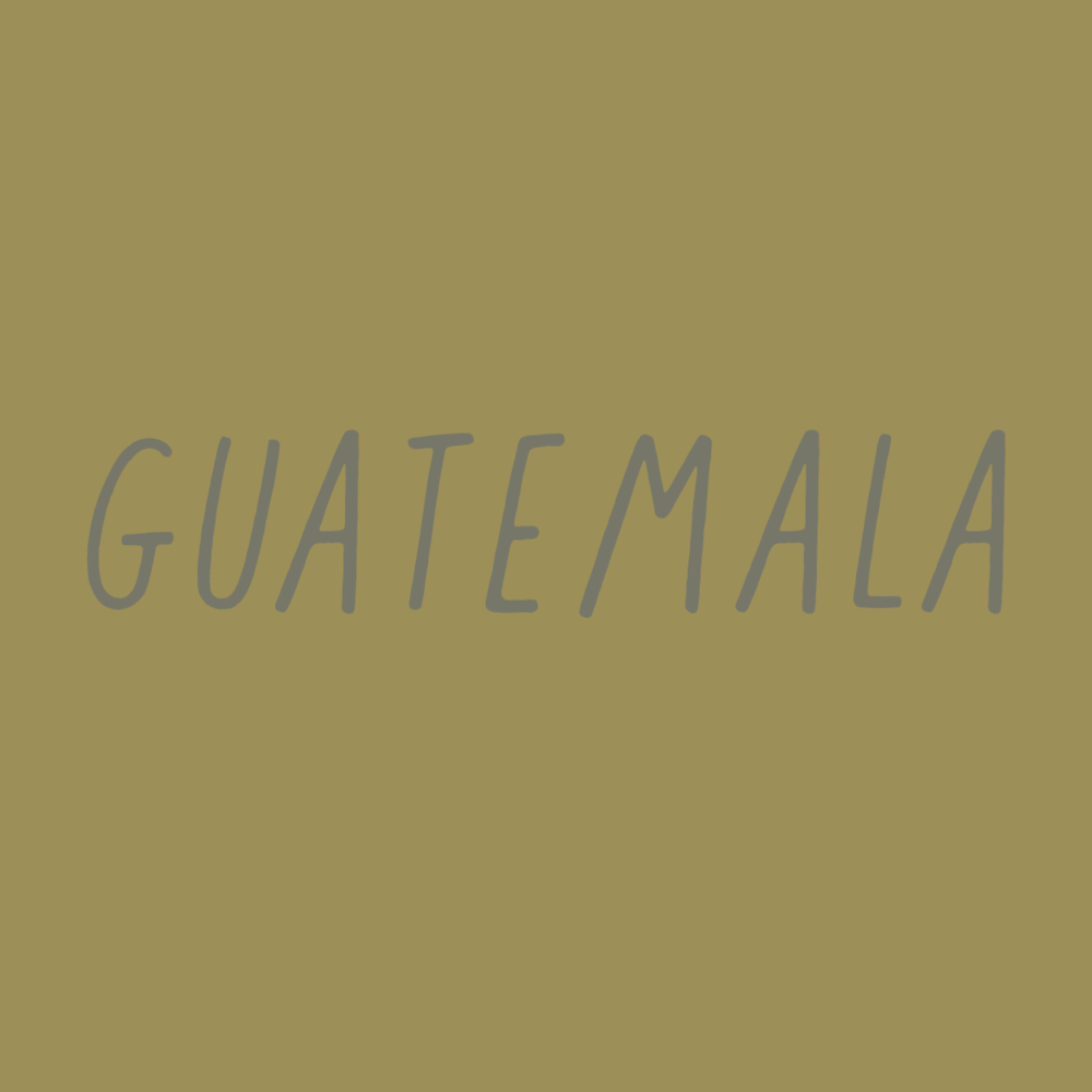 guatemala_office.png
