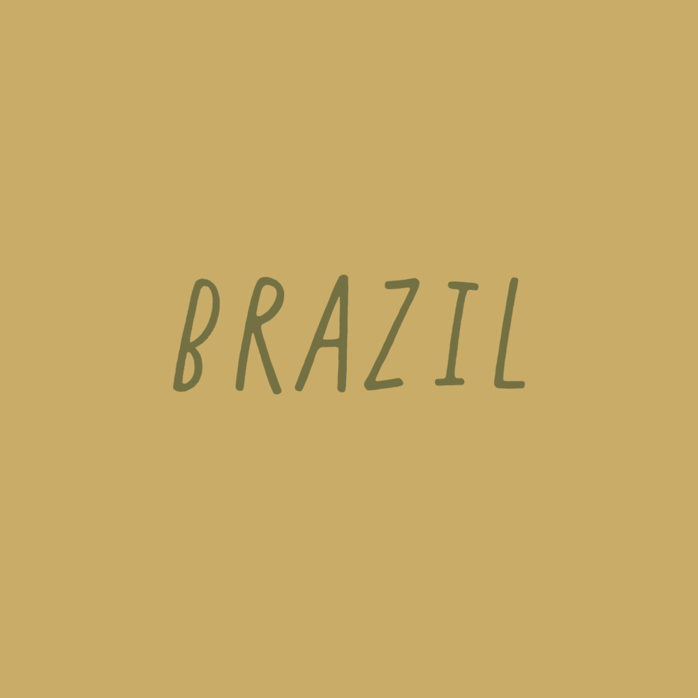brazil_office02.png