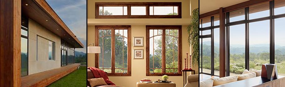 windows_header.jpg