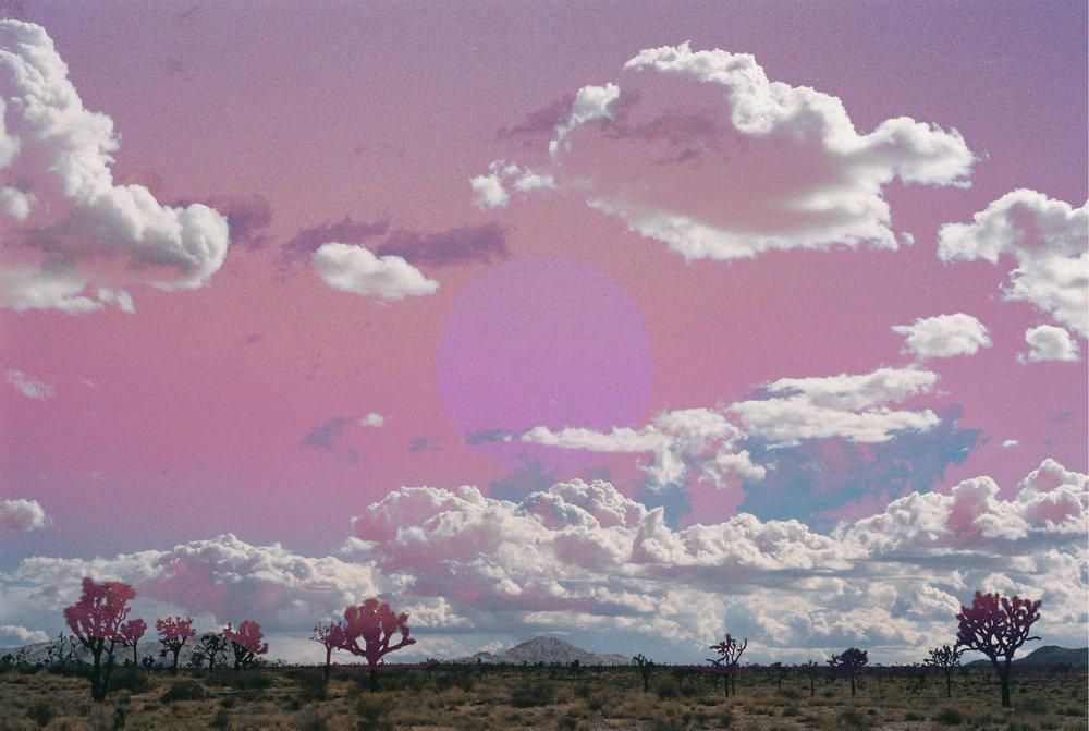 joshua tree pinkness portal 2.jpg