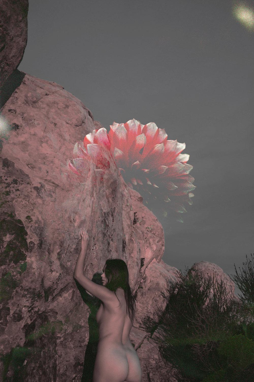 J flower *DSC08207.jpg