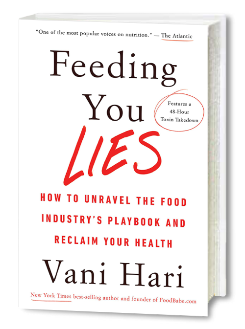 Feeding You Lies Book Cover.png