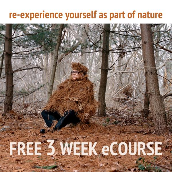 rewild-yourself-free-ecourse.jpg