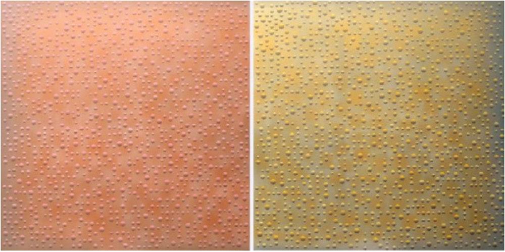 ATTAR MF/PHG/PM MF LXXIII  2002-2007 diptych (2x) 200x200 cm  For Anthony Fiumara