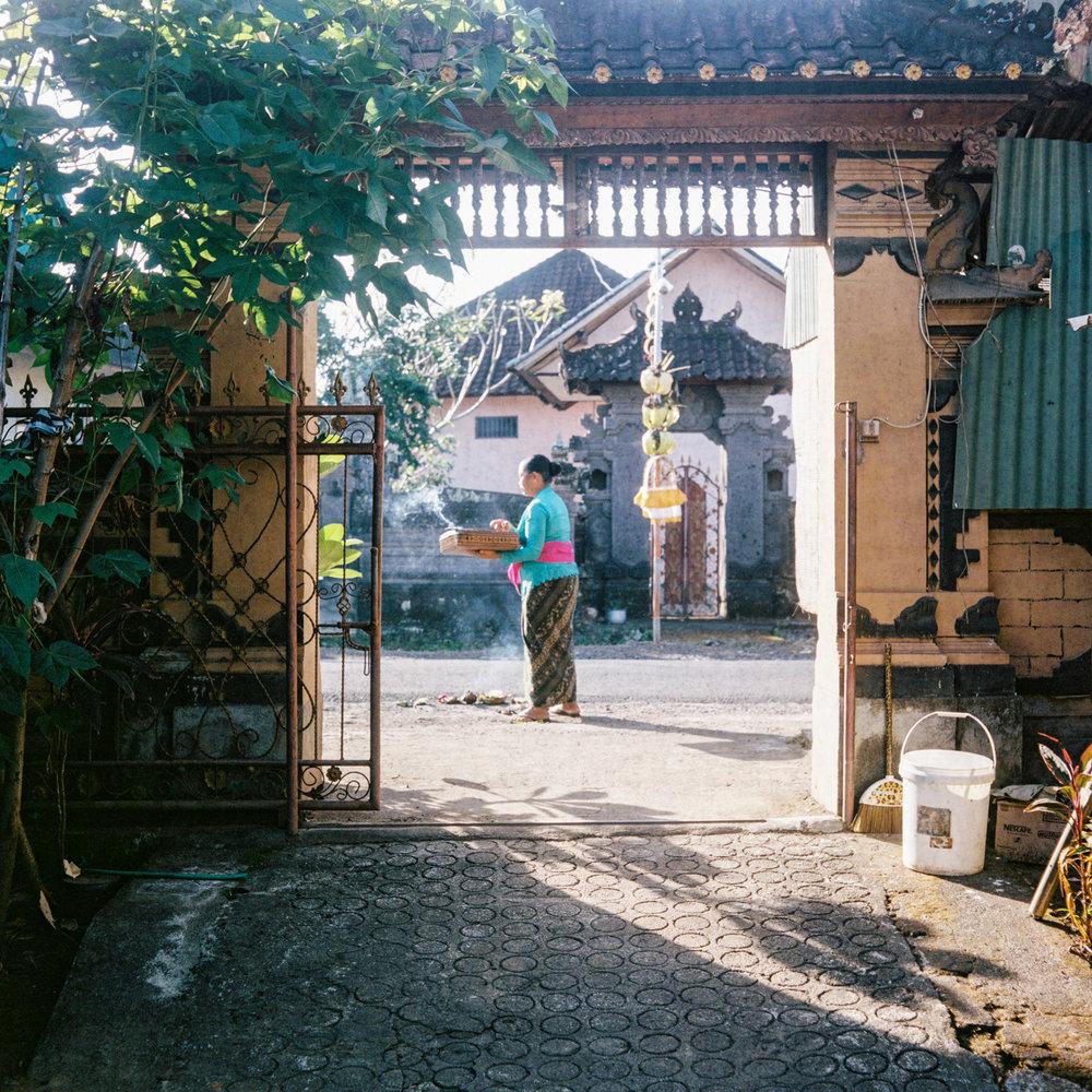 Dadong Begok puts offering in the main gate during Galungan Day at Tunjuk Village, Bali, Indonesia.