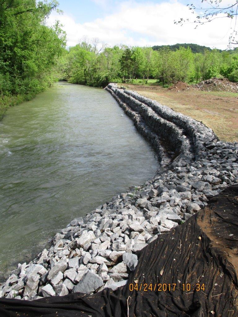 Stream Bank Restoration