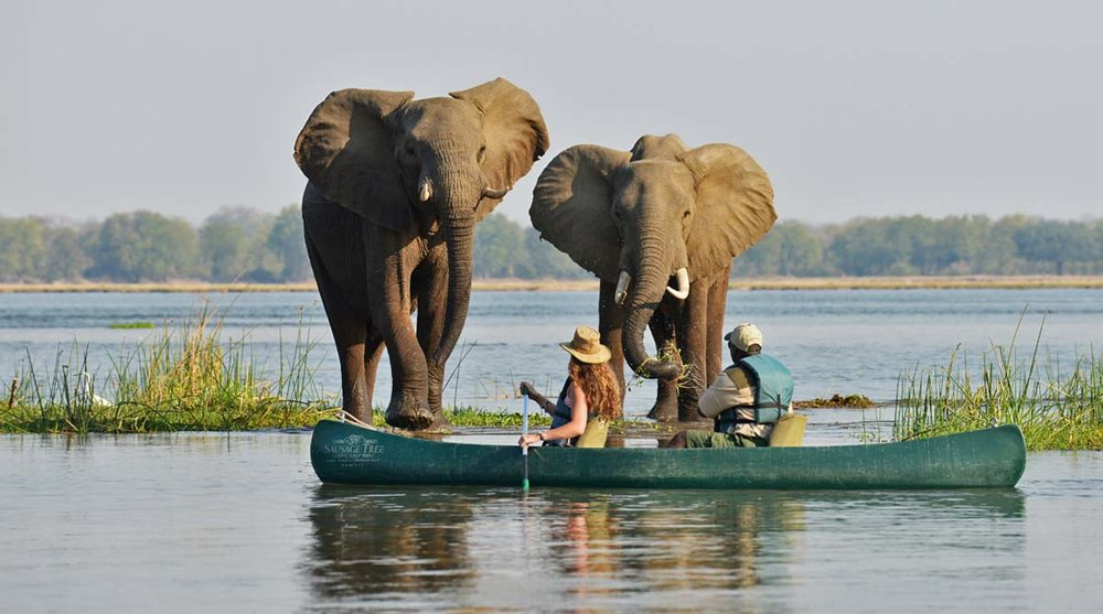 botswana-activities-adventure-safari-canoe-a2d-travel.jpg