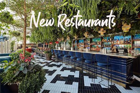 new-restaurants-openings-november-2018-a2d-travel.jpg