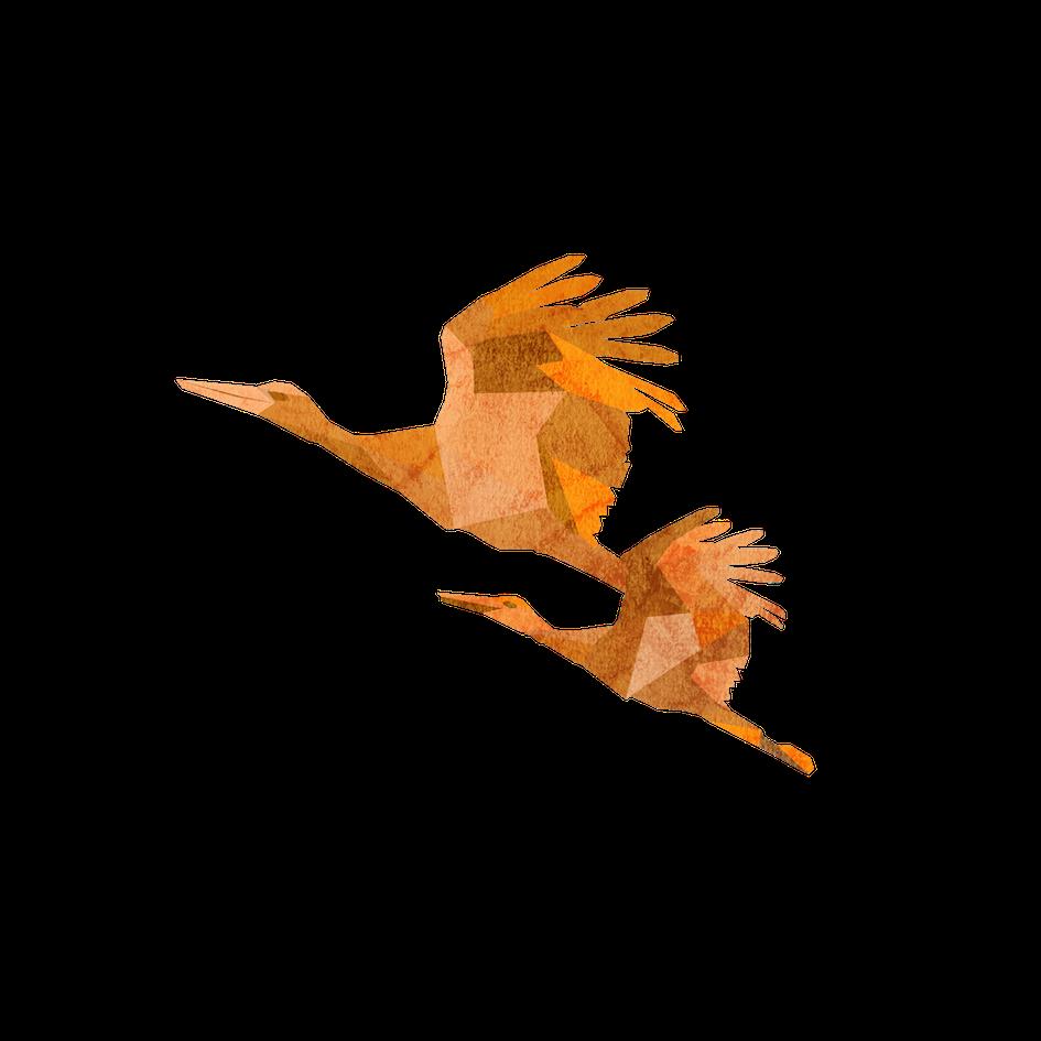 Stork - Impact.png