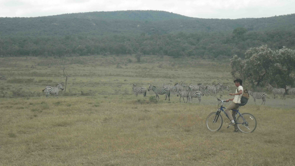 Kevin sharing a bicycle ride with some zebra in Hell's Gate National Park.