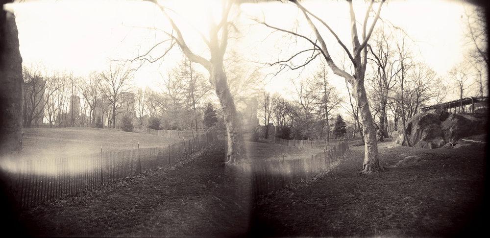 Landscape of Memory : lom 038   bleached silver print, framed  24 x 12cm, 1998
