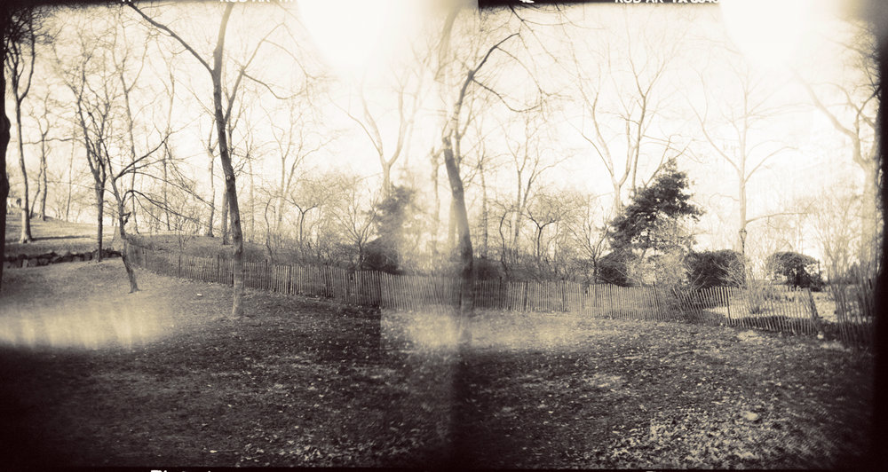Landscape of Memory : lom 045   bleached silver print, framed  23 x 12cm, 1999