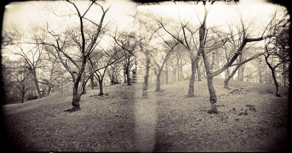 Landscape of Memory : lom 059   bleached silver print, framed  23 x 12cm, 1997