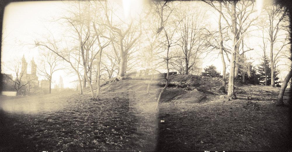Landscape of Memory : lom 062   bleached silver print, framed  23 x 12cm, 1998
