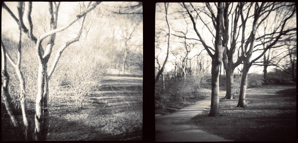 Landscape of Memory : lom 040   toned silver print, framed  29 x 14cm, 1997