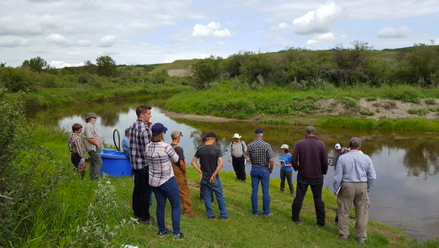 Landowners learn about riparian health assessments along the banks of the Battle River.