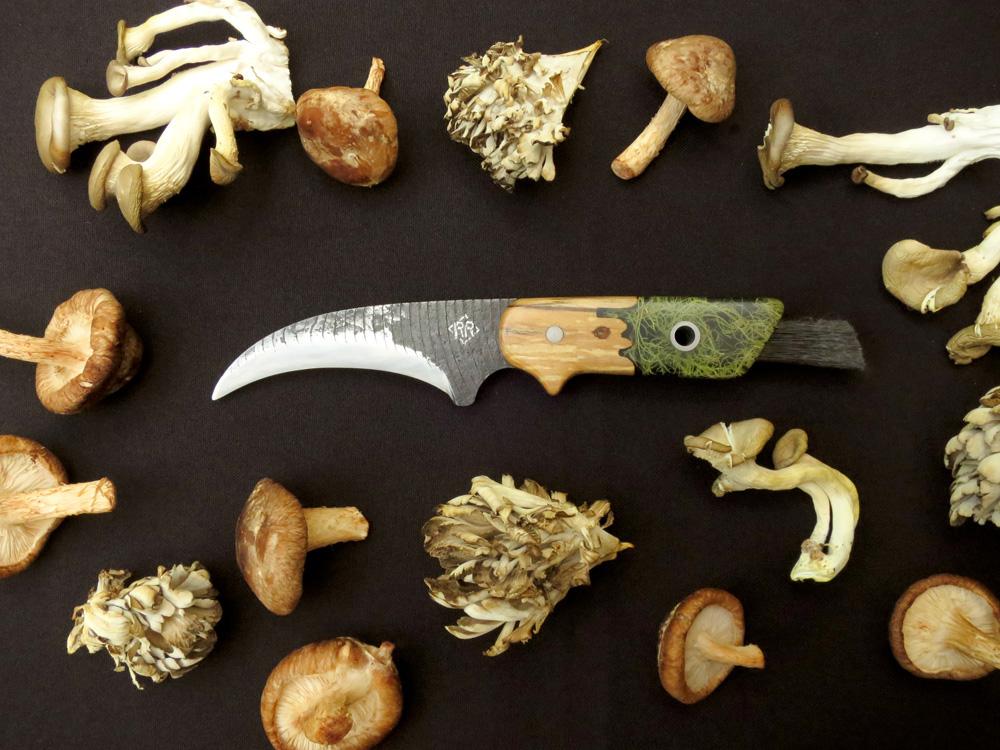MushroomHunter_withshrooms2_1500px.jpg