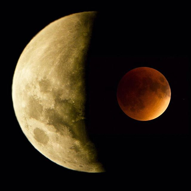 Total eclipses of Super Full Moons are rare. According to NASA, they have only occurred 5 times in the 1900s. #funfact #VisionHawk #JacksonHole15 #canon #RED @shotovercamera