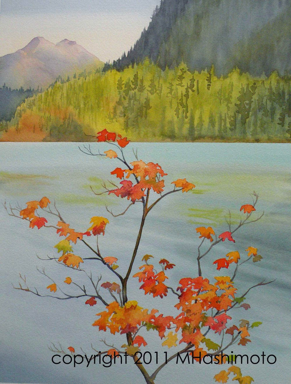 Vine Maple, Diablo Lake - Giclee Print $75
