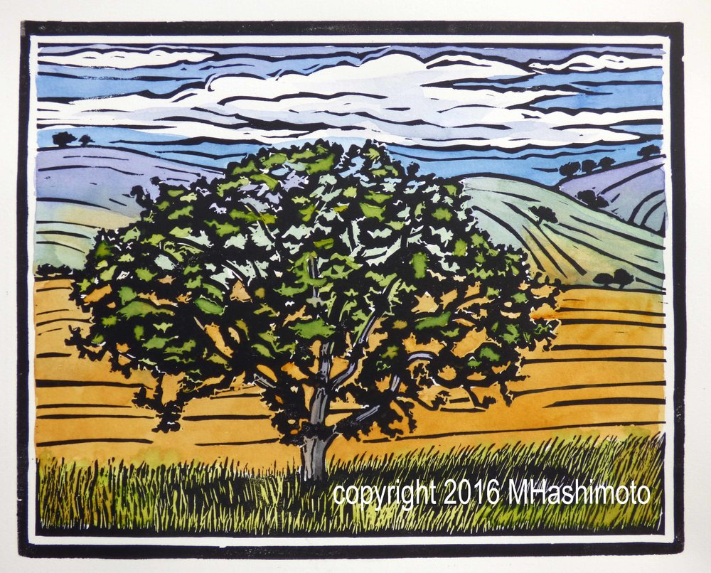 Oregon White Oak