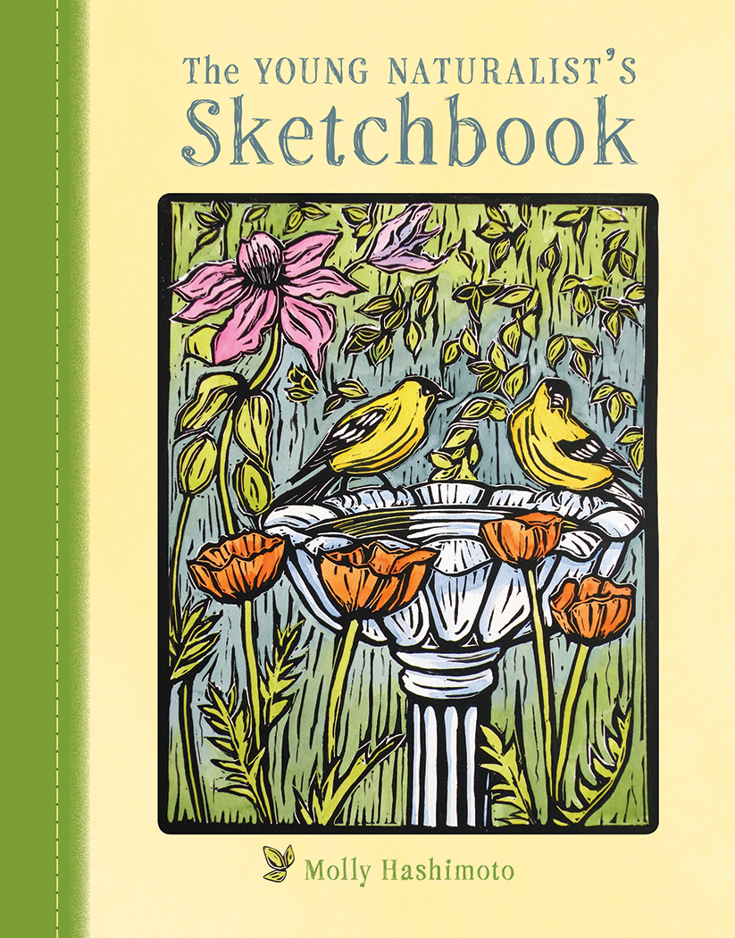 The Young Naturalist's Sketchbook $19.95